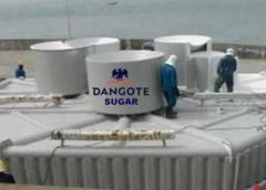 7 Dead as Soldiers Open Fire on Protesting DANGOTE Sugar company workers in Adamawa